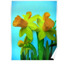 Daffodils with Blue Poster
