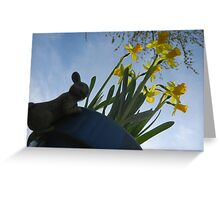 Planted Daffodils Greeting Card