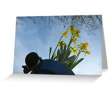 Planted Daffodils 2 Greeting Card