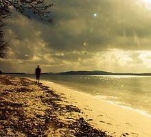 Along the shore at Bagnalls 2 by jubrok