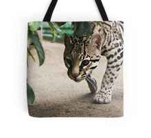 Here, Kitty? Tote Bag