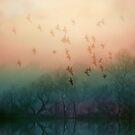 Lake Song by Mark Wade