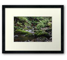 Evercreech Tasmania Framed Print