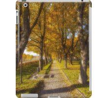 Quiet parkway iPad Case/Skin