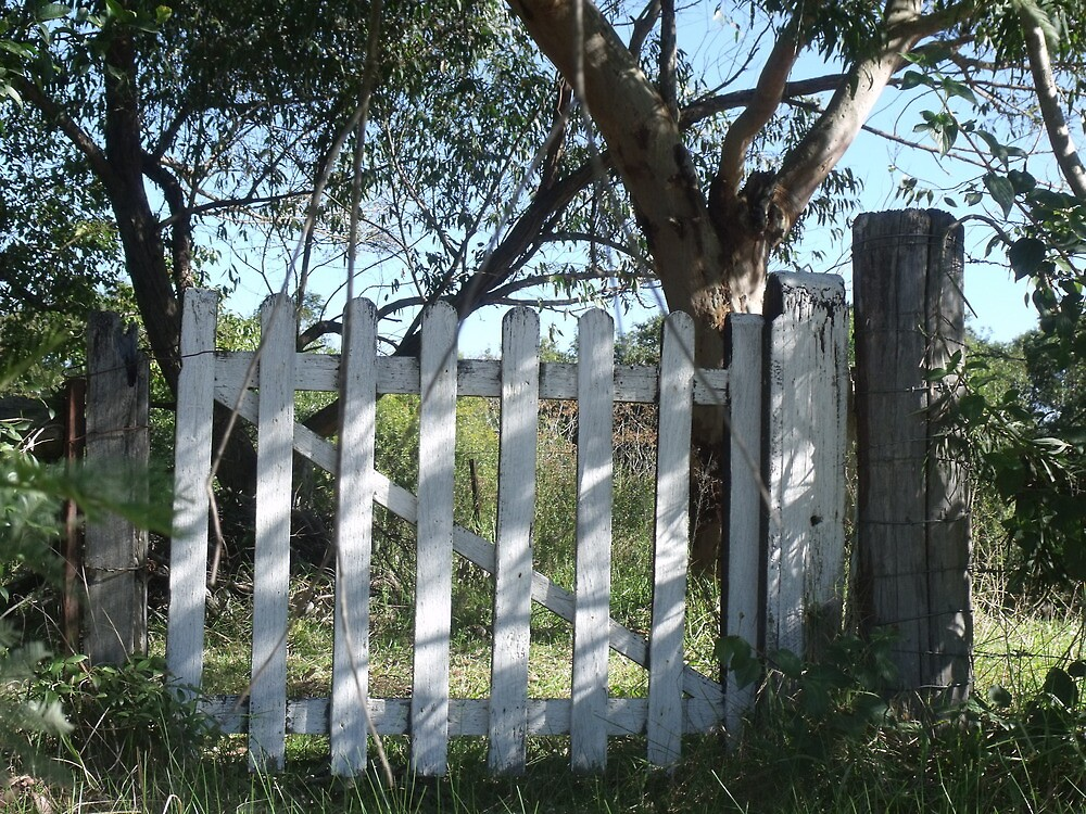 Old Wooden Gate by Judy Woodman