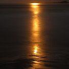 full moon light. eastcoast, tasmania by tim buckley | bodhiimages