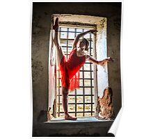 Dance Dreams Poster