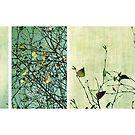 Les feuilles du passé by Anne Staub