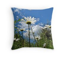Oxeye Daisies Wildflowers - Leucanthemum vulgare Throw Pillow