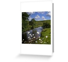 Beyond the Daisies Greeting Card