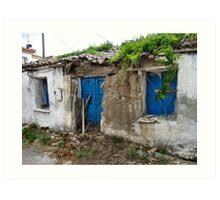 Fix a few slates and paint the door then it will be as good as new !! Art Print