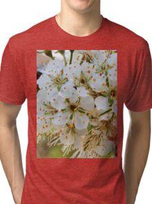 Tree blossoms Tri-blend T-Shirt