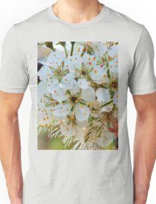 Tree blossoms Unisex T-Shirt
