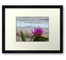Ocean Flower Framed Print
