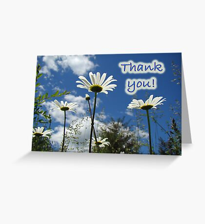 Thank You Greeting Card - Oxeye Daisy Wildflowers Greeting Card