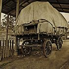 The Old Bullock Dray  (Driver's gone to find a wife) by TonyCrehan