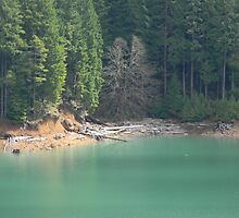 Foster Lake by wasdstomp