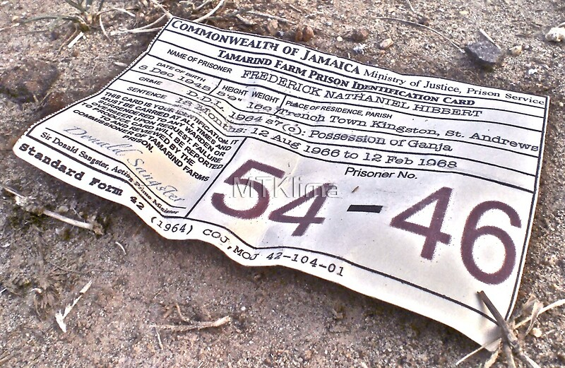 54 46 was my number: