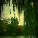 Paradise © by Dawn Becker