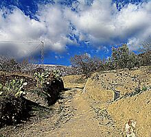 Dirt Road by mfoged