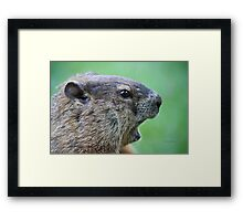 OMG I can't believe you just caught me! Framed Print