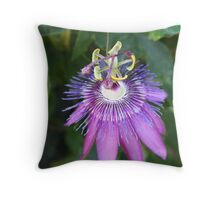 Passiflora aka Passion Flower Vine Throw Pillow