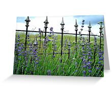 Lavender Before A Storm Greeting Card
