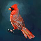 Cardinal by freeminds