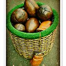 What's In Your Basket! by Lorraine Caballero Simpson (c more vision)