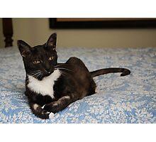Remembering Smokey ~ June 2012 Photographic Print