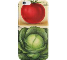 Wholesome 1913 seed catalog art: Early Detroit Tomato and Copenhagen Market Cabbage iPhone Case/Skin