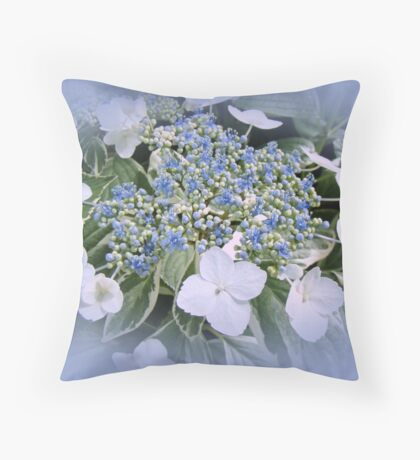 Variegated Lace Cap Hydrangea - Blue and White Throw Pillow