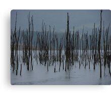 Drowned Trees, Lake Jounama, Snowy Mountains, Australia. Canvas Print