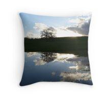 Lakeland reflection Throw Pillow