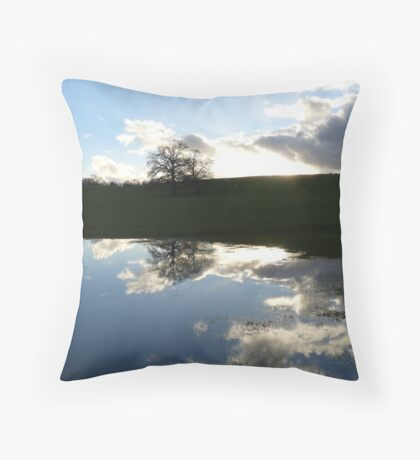 Lakeland reflection Throw Pillow