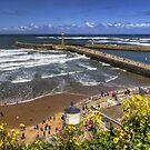 West Cliff Beach by Tom Gomez