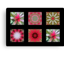 Flowers and Kaleidoscopes #3 Canvas Print