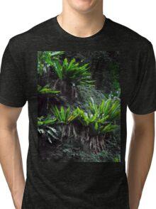 Rainforest Beauty, Minnamurra Falls, NSW, Australia. Tri-blend T-Shirt