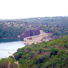 Jozini Dam, gateway to life in KwaZulu-Natal, South Africa by Irene  van Vuuren