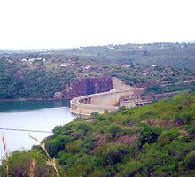 Jozini Dam, gateway to life in KwaZulu-Natal, South Africa by Irene  van Vuuren