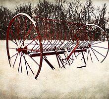 Raking Snow by Miles Moody