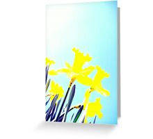 Daffodils in the Sky (Light) Greeting Card