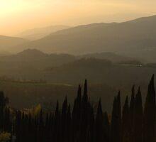 Evening Shades Tuscany Italy by Bob Christopher