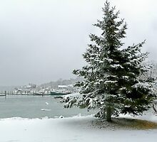 Winter harbor scene by Janice Drew