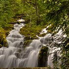 Upper Proxy Falls  by Cynthia Broomfield