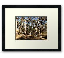 The Bush Framed Print