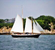 Sailing in Newport , Rhode Island # 5 by Unelanvhi