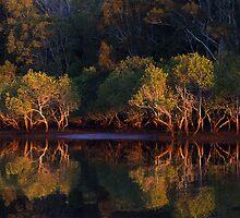 Cudgen Creek Sunrise by Patricia Car