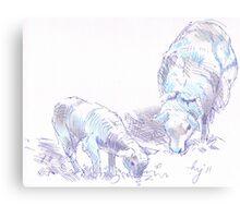 Sheep and Lamb Grazing Pencil & Pen Drawing Canvas Print