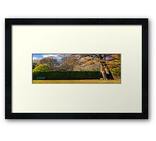 I Saved A Seat For You Framed Print